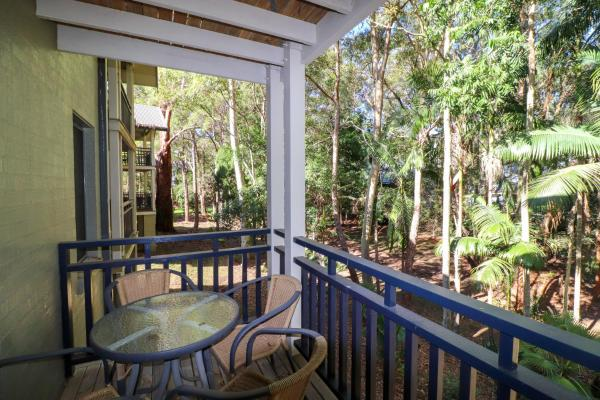 Dollarbird Treetops Townhouse Cams Wharf