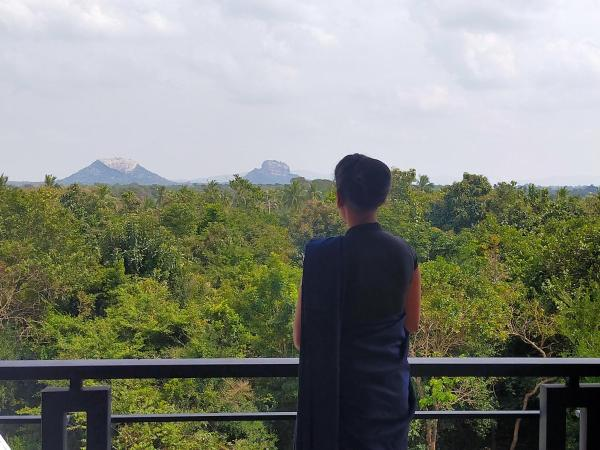 Cassandra Culture Resort Sigiriya