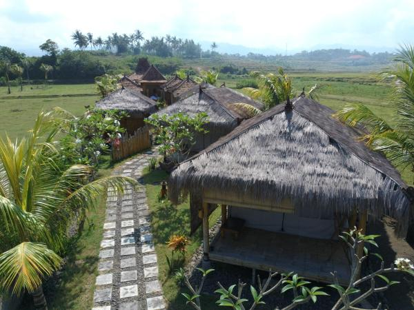 Bali Tiger Surf and Beach Camp