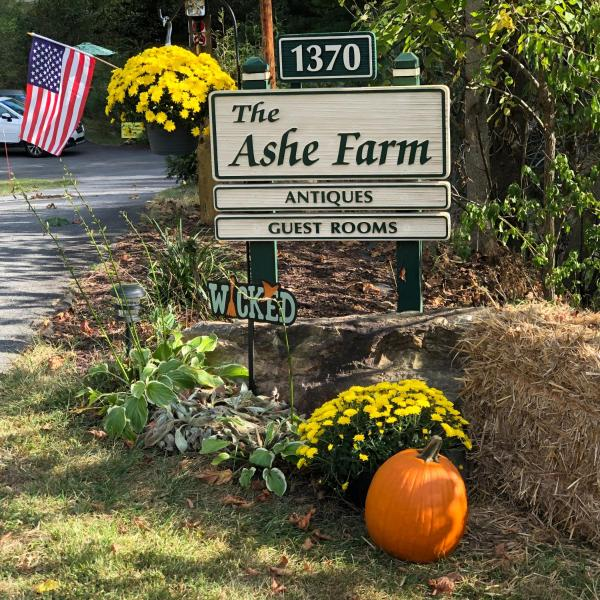 The Ashe Farm