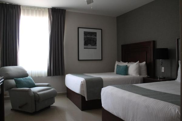 Hotel Suites Mexico Plaza Campestre 莱昂