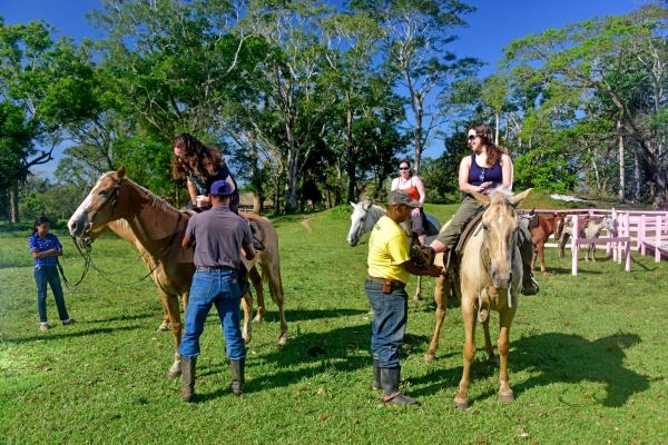 Banana Bank Lodge & Jungle Horseback Adventures Belmopan