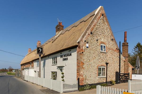 The Ingham Swan