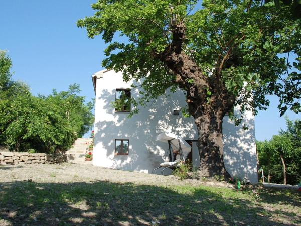 Farm stay Lisa Sant'Ippolito