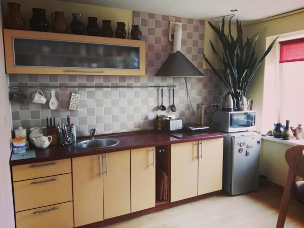 Green Hall apartment Ignalina