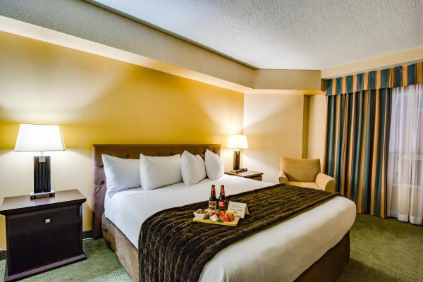 Sawridge Inn and Conference Centre Edmonton South Edmonton