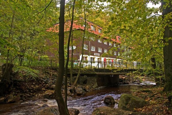 flair hotel ilsenburg