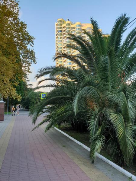 Апартаменты pushkin travel недвижимость в финляндии у озера